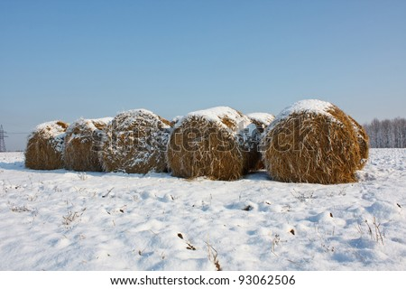 Haystack in winter - stock photo