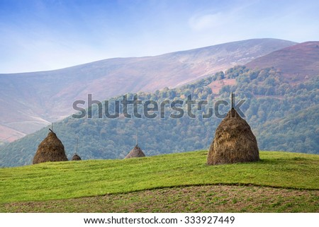 Haystack on green meadow, selective focus. Mountains in blue mist and forest on background - stock photo