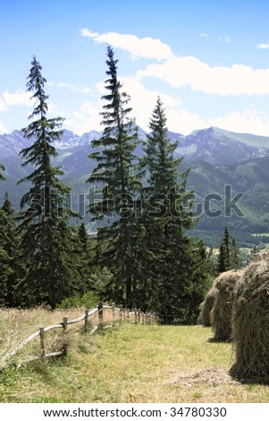 haystack on the field in mountains - stock photo