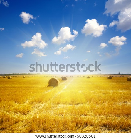 haystack on the meadow in summer - stock photo
