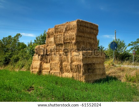 Haystacks bales in countryside.
