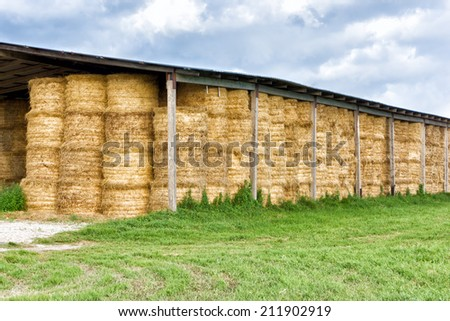 Haystacks in barn at the agricultural farm - stock photo