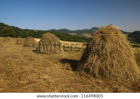 Haystacks in the agricultural land with Makaravank monastery in the background - stock photo