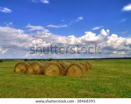Haystacks on a green field - stock photo