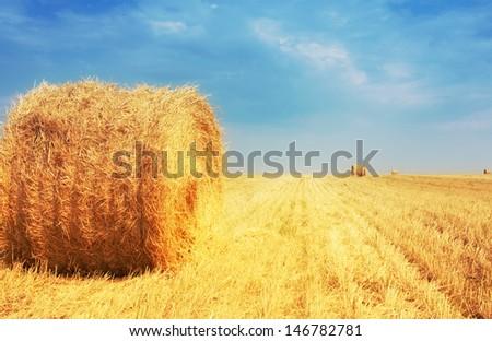 Haystacks on the field - stock photo