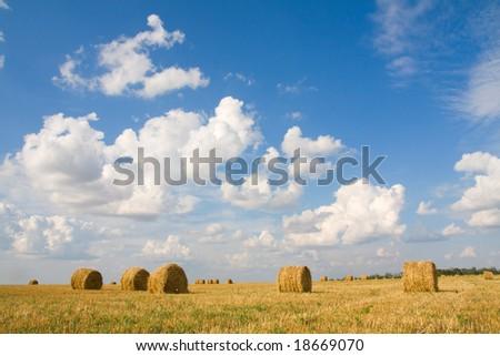 haystacks under the skies - stock photo