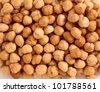 Hazel nuts - stock photo