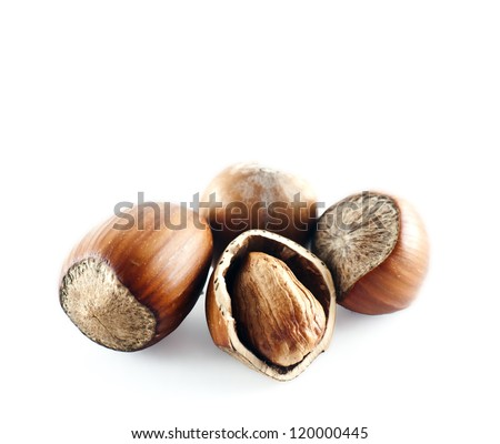 Hazel nuts isolated on a white background