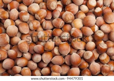 Hazelnut background - stock photo