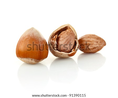 hazelnut in shell and without isolated on white background