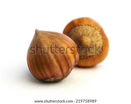 hazelnuts close-up isolated on white - stock photo