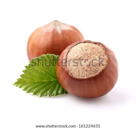 Hazelnuts in closeup - stock photo
