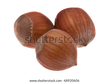 Hazelnuts in front of white background