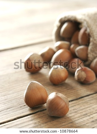 Hazelnuts in old sack on wooden table