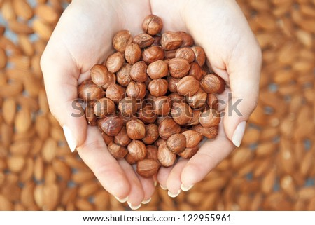 Hazelnuts in woman's hands - stock photo