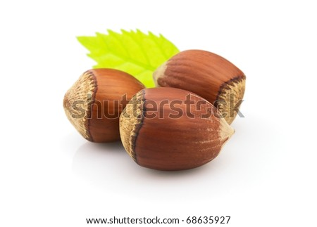 Hazelnuts with leaves on a white background