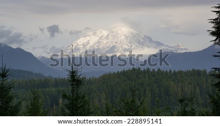 Hazy Atmospheric Conditions National Forest Mt Rainier - stock photo