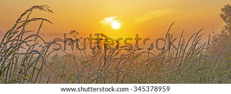 Hazy sunrise over a field in spring