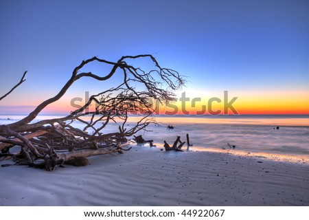 hdr image of beach and driftwood at twilight - stock photo