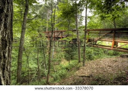 HDR image of foot bridge in the forest