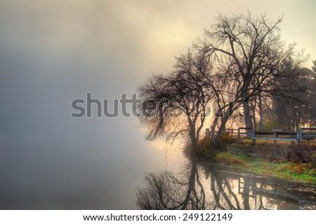 HDR landscape of a mystic foggy scene - stock photo