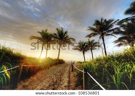 HDR of Path to Beach in Miami - stock photo
