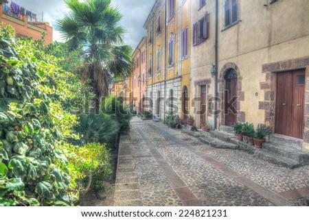 hdr street in Villanova Monteleone, Italy - stock photo