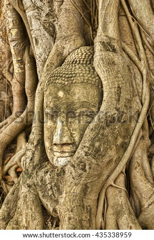 Head of a stone Buddha figure embedded in tree roots in Ayutthaya Historical Park, which has the ruins of the ancient capital of Thailand, and is a UNESCO World Heritage Site. - stock photo