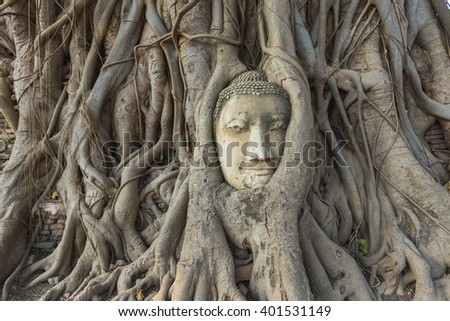 Head of Buddha statue in the tree roots at Wat Mahathat, Ayutthaya, Thailand.