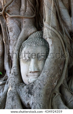 Head of Buddha statue in the tree roots at Wat Mahathat Head of Buddha statue in the tree roots at Wat Mahathat. Thailand