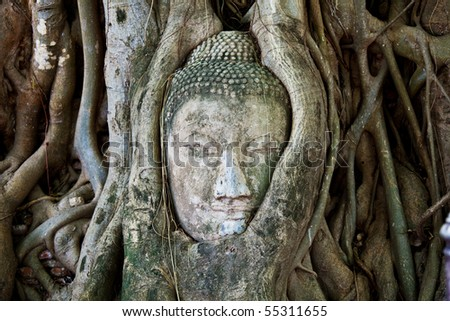 Head of Sandstone Buddha at Ayutthaya.Thailand.