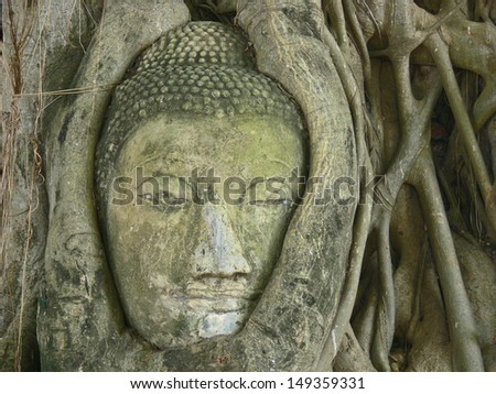 Head of Sandstone Buddha in The Tree Roots at Wat Mahathat,Thailand
