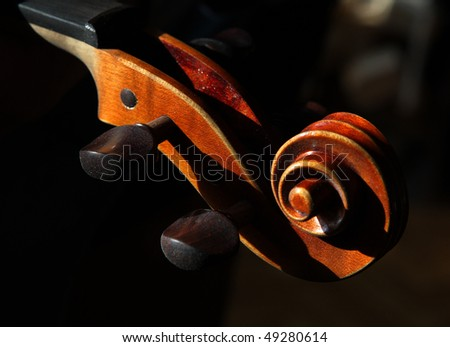 head violin - stock photo