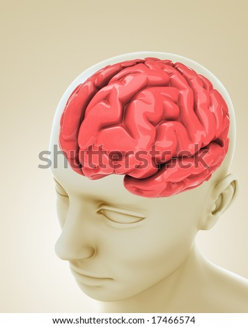 Head with a brain inside. Concept of thinking, mind, idea, etc. - stock photo