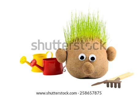 Head with grass and gardening tools on white background - stock photo