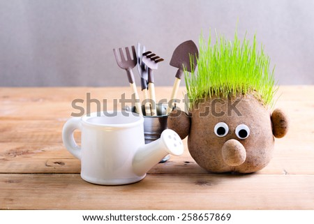 Head with grass and gardening tools on wooden table - stock photo