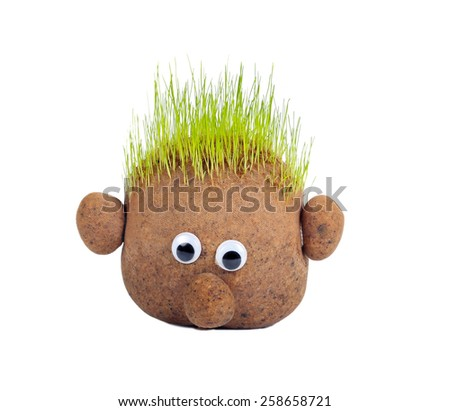 Head with grass on top over white background - stock photo