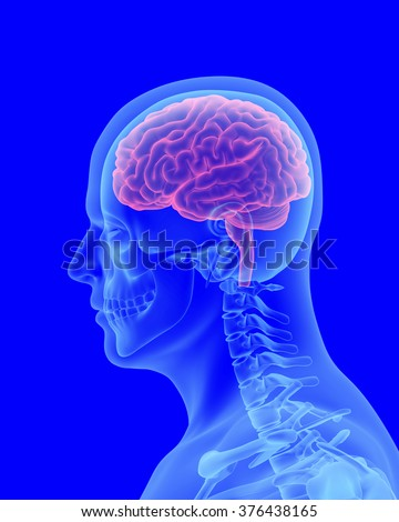 headache x-ray scan of human body with visible brain side view - stock photo