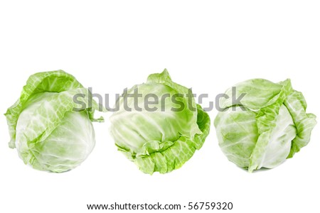 heads of cabbage isolated on white background - stock photo