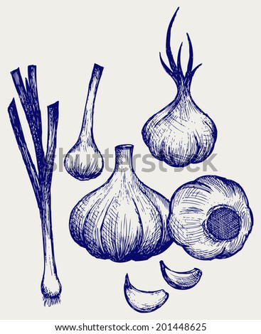 Heads of garlic. Young garlic. Doodle style. Raster version - stock photo