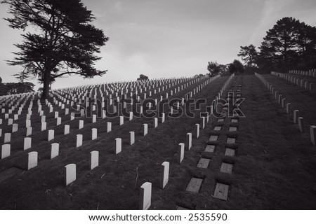 Headstones on the San Francisco National Cemetery - stock photo
