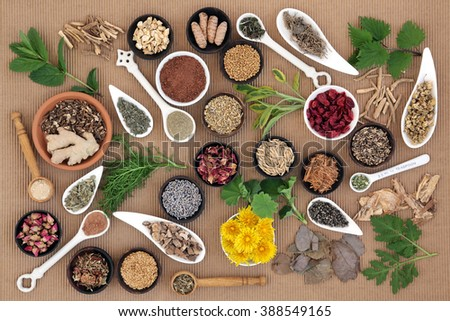 Healing herb and spice selection used in natural alternative medicine for women. - stock photo