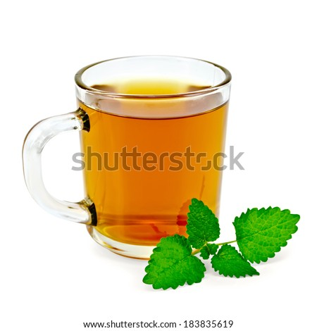 Healing herbal tea in a glass mug with a sprig of melissa isolated on white background - stock photo