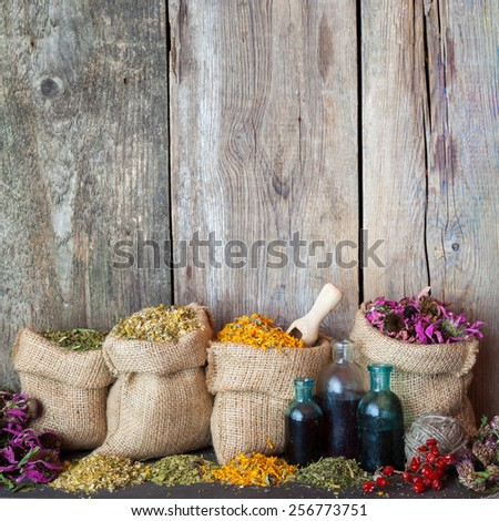 Healing herbs in hessian bags and blue bottles with tincture on old wooden background, herbal medicine. - stock photo