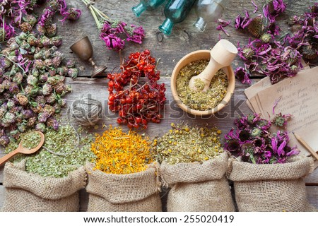 Healing herbs in hessian bags, wooden mortar, small bottles on old wooden table, herbal medicine. Top view. - stock photo