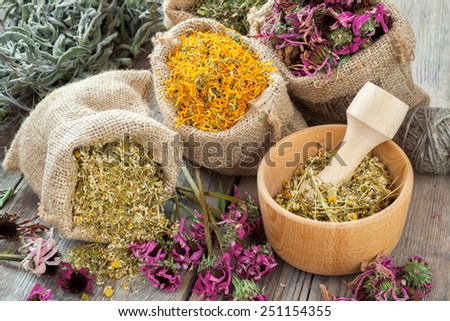 Healing herbs in hessian bags, wooden mortar with chamomile on rustic table, herbal medicine. - stock photo