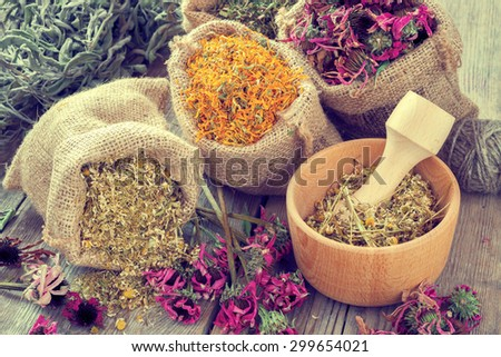 Healing herbs in hessian bags, wooden mortar with chamomile on rustic table, herbal medicine.Vintage styled. - stock photo