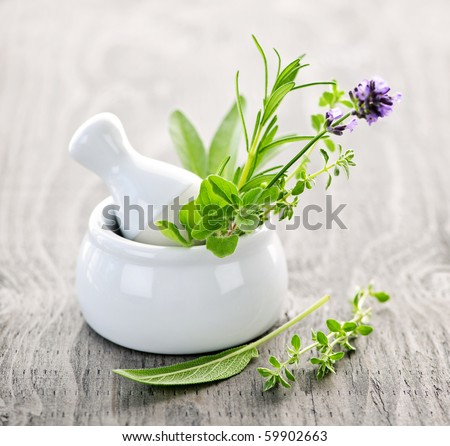 Healing herbs in white ceramic mortar and pestle - stock photo