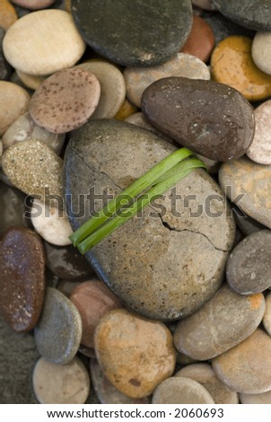 Healing Stone. Broken river stone wrapped with a long blade of grass.