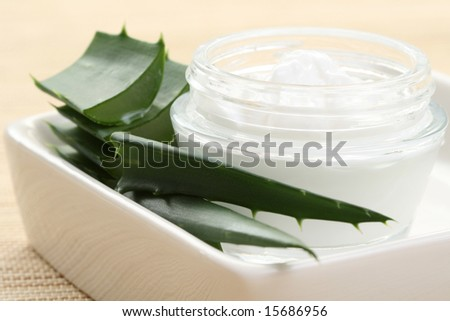 health and beauty - aloe cream and aloe vera